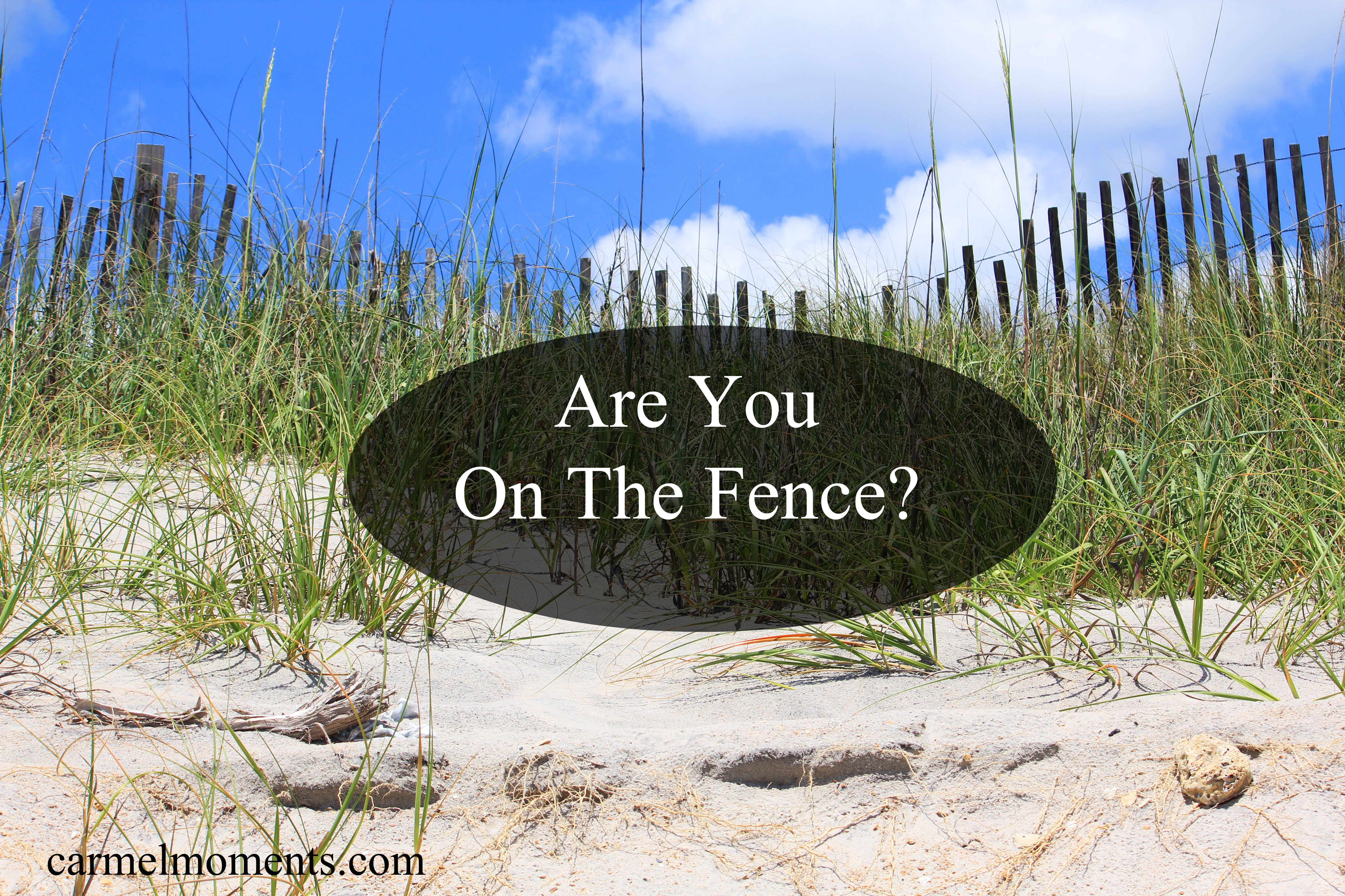 Are you on the Fence…Undecided?