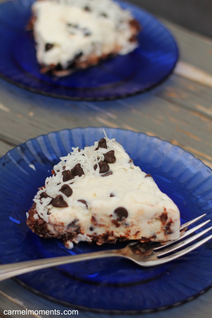 Coconut Chocolate Chip Pie