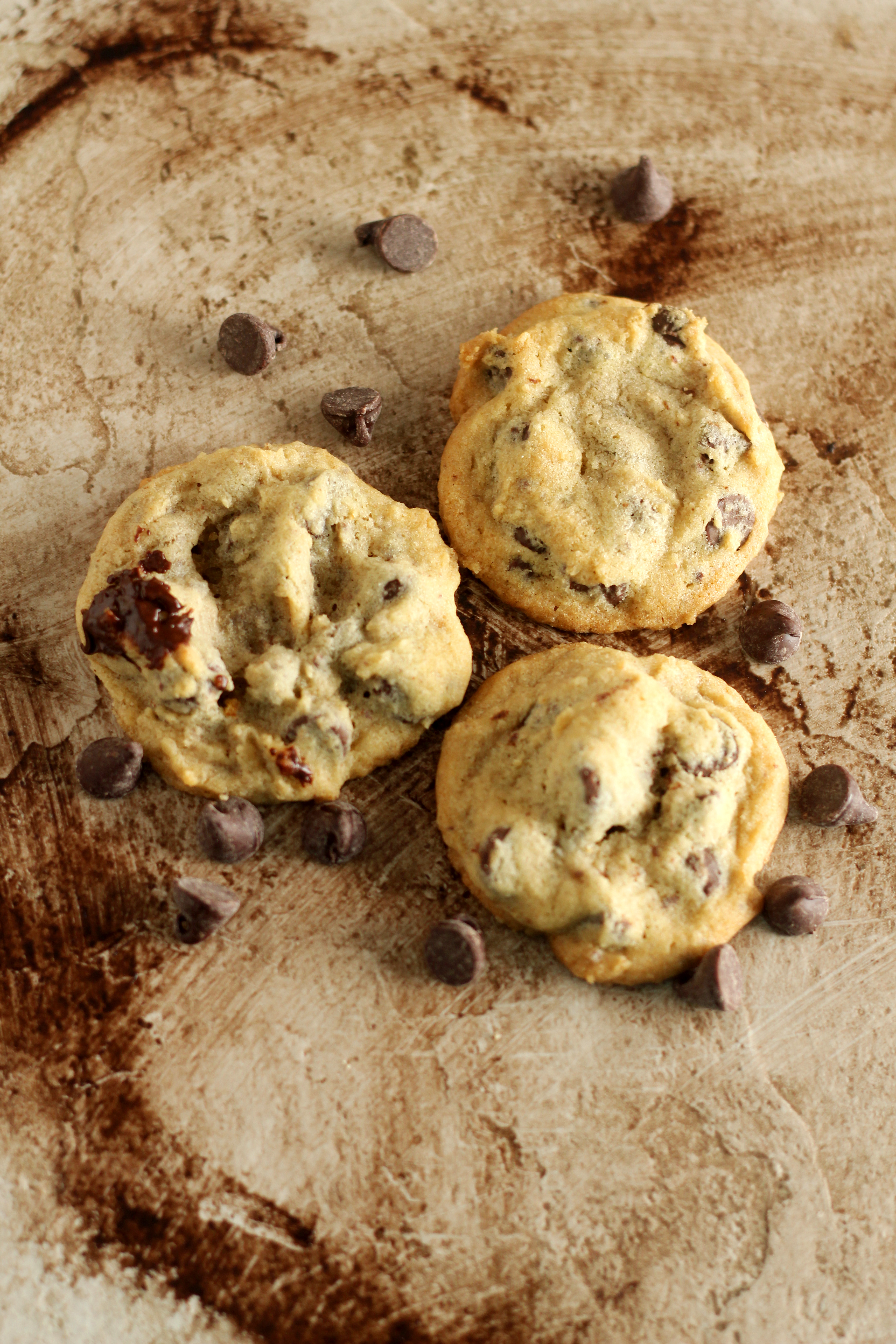 Chocolate Chip and Chunk Cookies - Gather for Bread