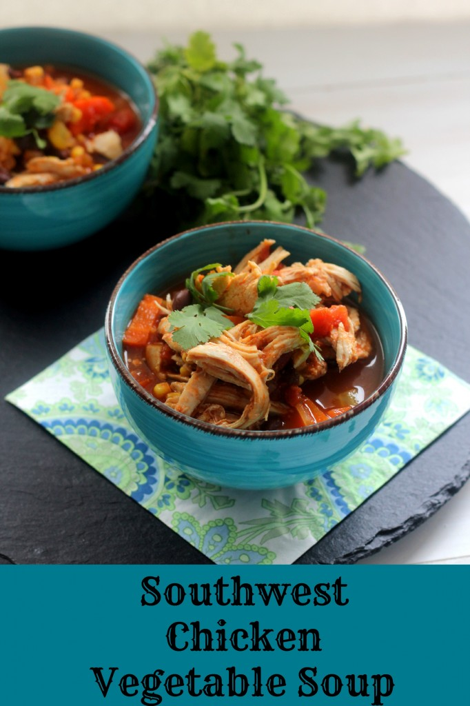 Southwest Chicken Vegetable Soup | Carmel Moments
