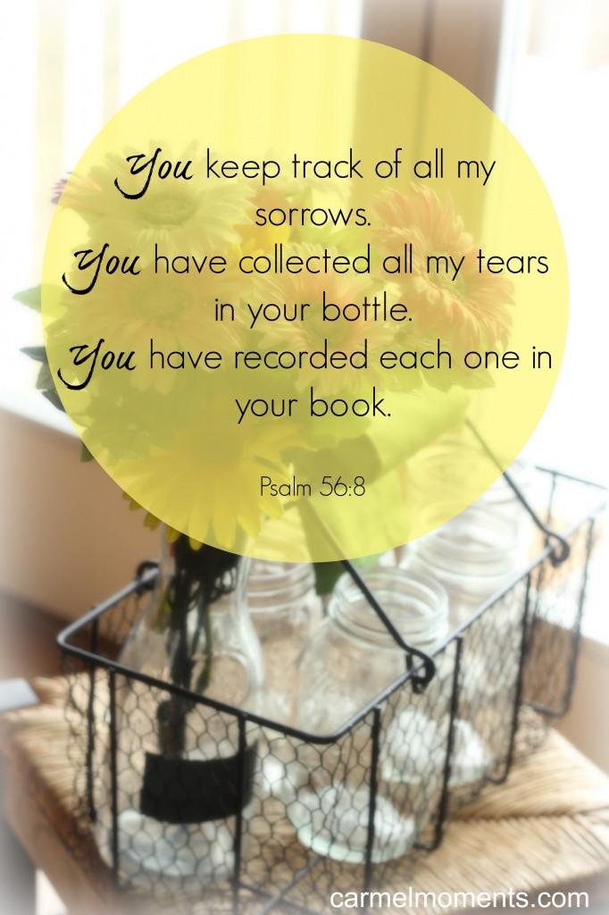 Psalm 56:8 - Carmel Moments