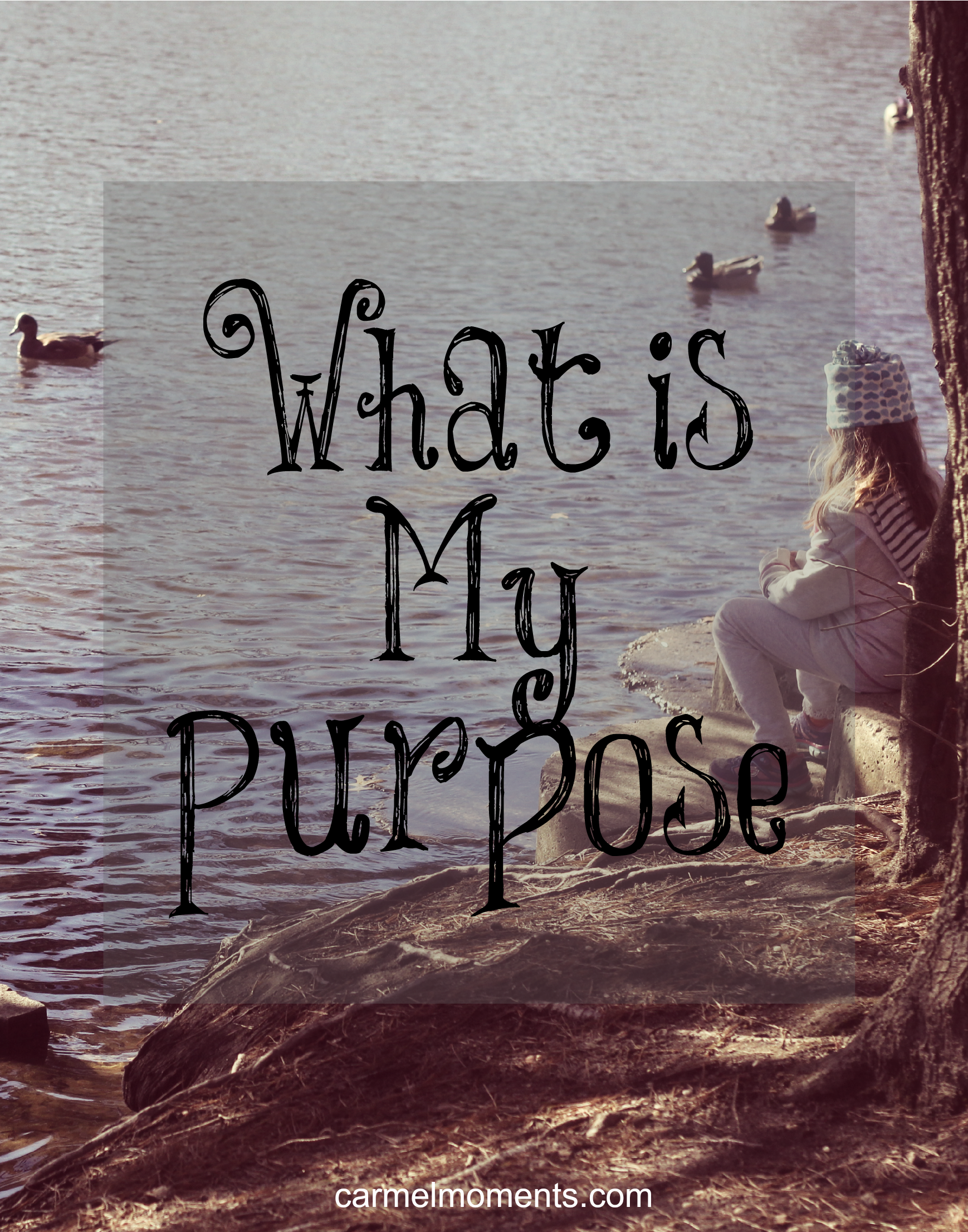 what is the purpose of my Examples of life purpose statements here is a sampling of life purpose statements that i have either found or helped my clients create hope it inspires you to find your purpose in life.